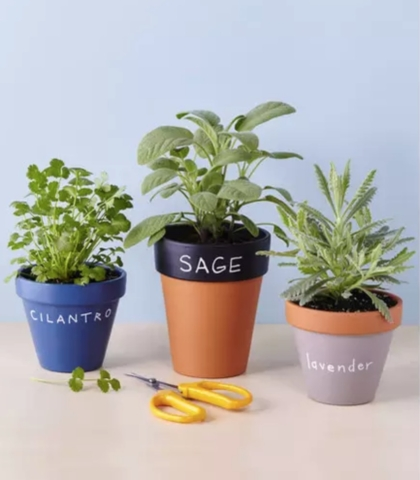DIY Planters That'll Totally Transform Your Garden